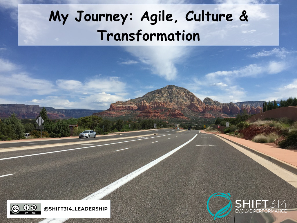 Agile Culture & Transformation Journey
